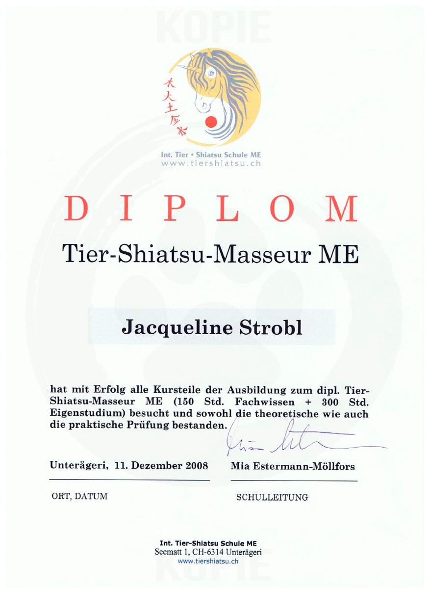 Diplom Tier-Shiatsu-Masseur ME