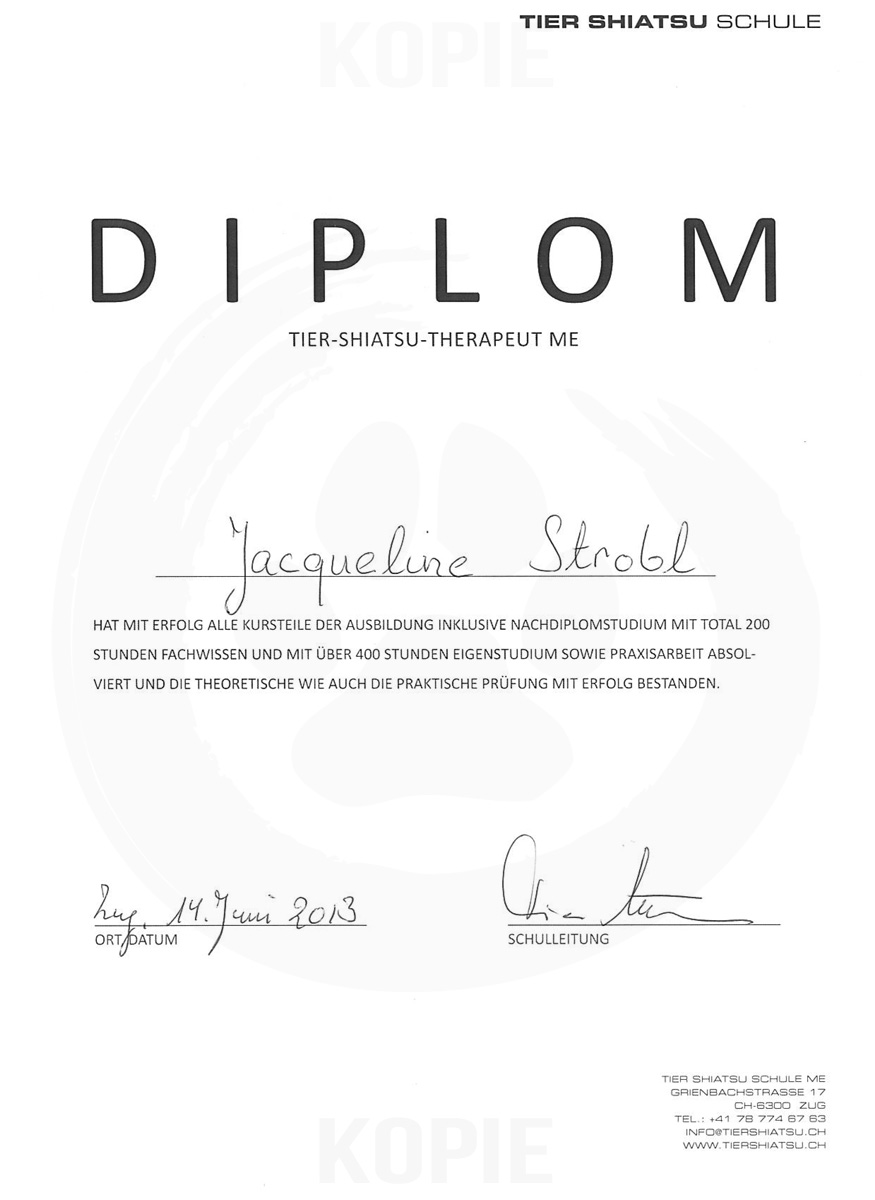 Diplom Tier-Shiatsu-Therapeut ME