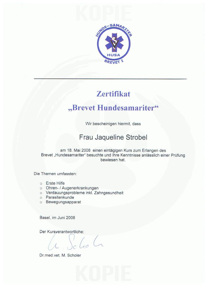 Zertifikat Brevet Hundesamariter